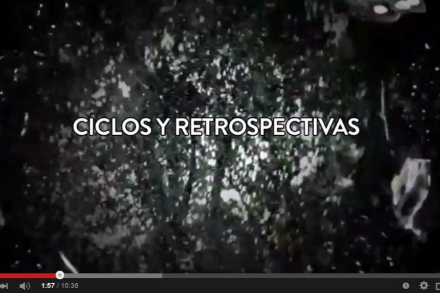 Vídeo-resumen (S8) 2014: ver lo que fue, desear lo que será