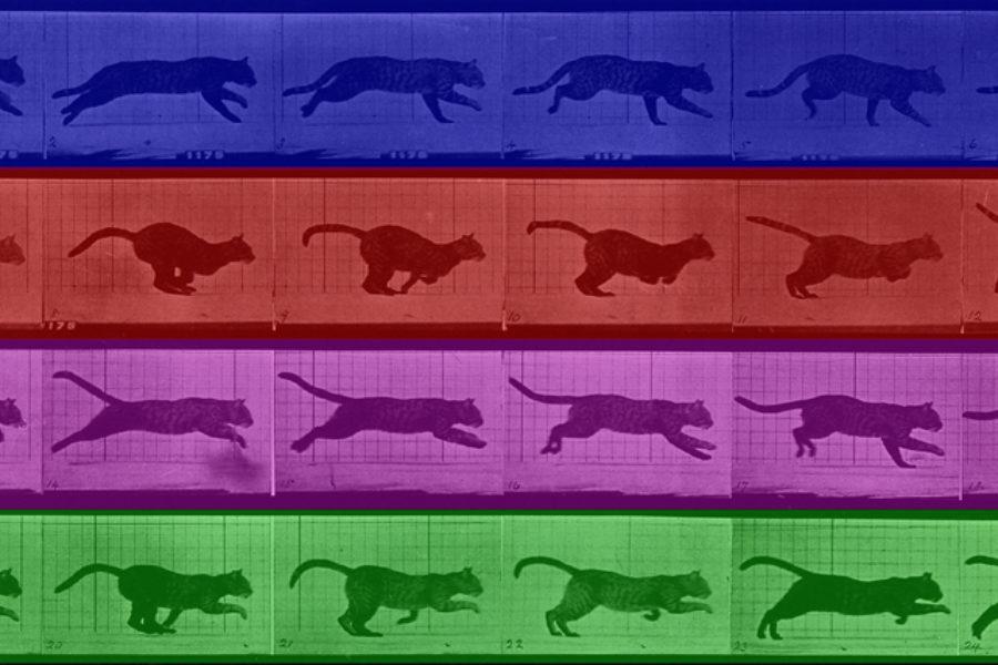 Mini (S8)La imagen expandida. Laboratorio de cine y experimentación audiovisual