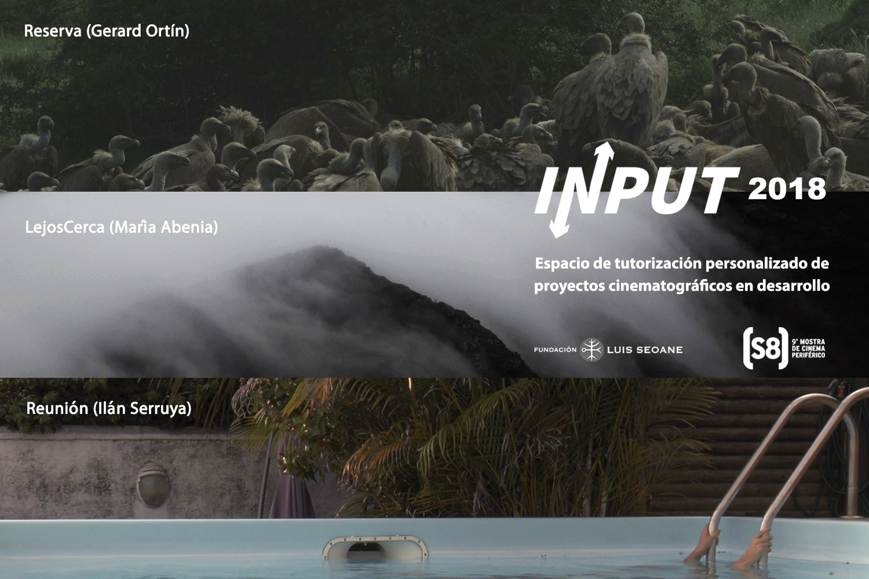 Proyectos seleccionados INPUT 2018
