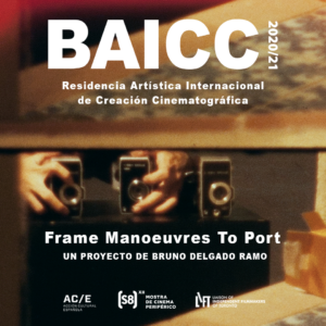 FRAME MANOEUVRES TO PORT, selected project BAICC 2020/21